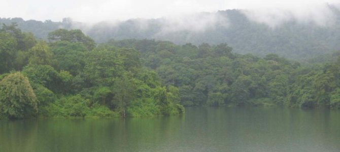 Peechi-Vazhani Wild Life Sanctuary