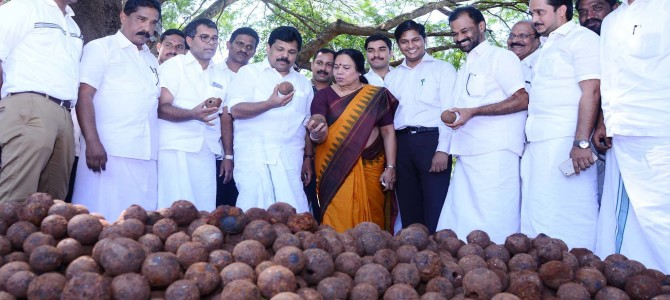 35, 950 Canon balls unearthed at St Angelo's Fort Kannur