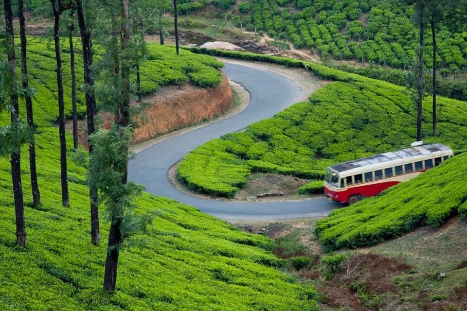 Vagamon, Idukki, Kerala